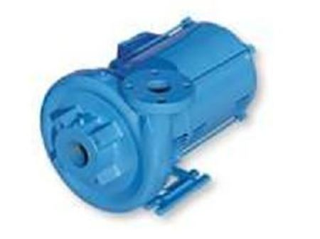 Picture for category End Suction Pumps